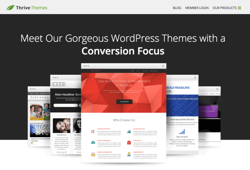 conversion focused themes