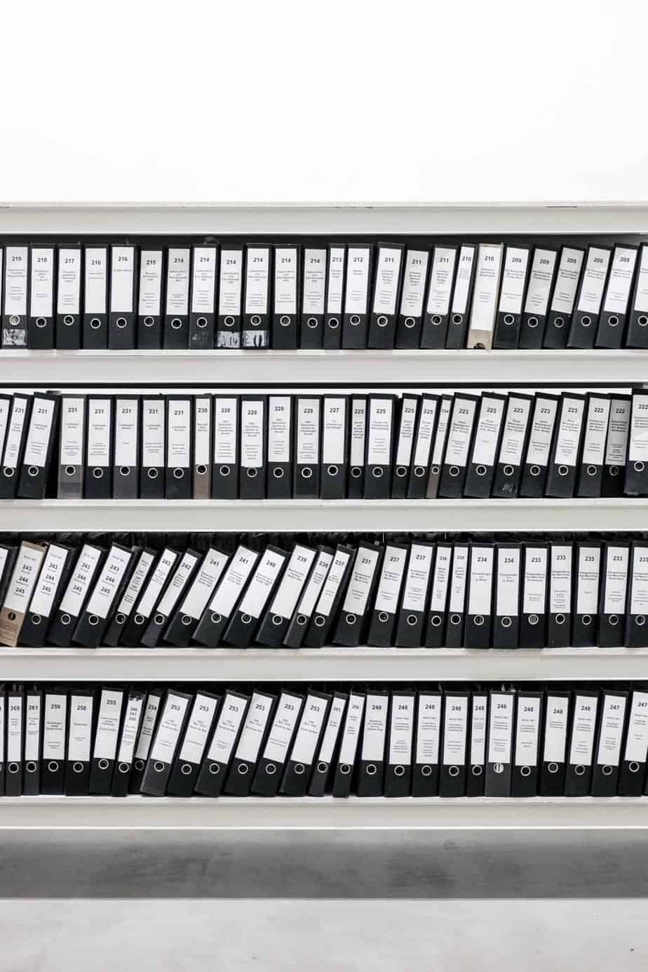 clean up wordpress database