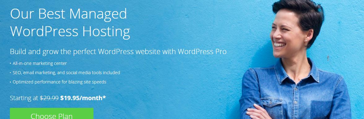 BlueHost WordPress Pro Review