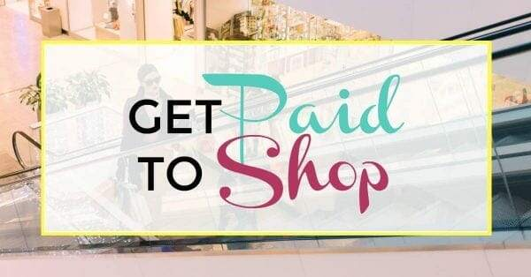 Make $100 A Day Shopping