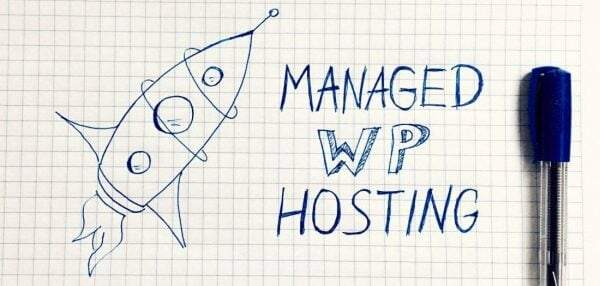 Kinsta Managed WordPress Hosting Review