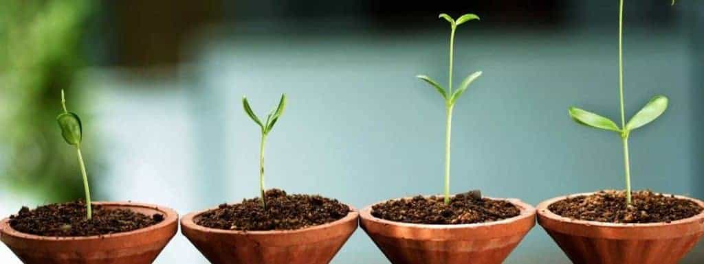 17 Tips To Rapidly Grow Your StartUp