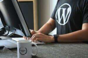 Wordpress Skills